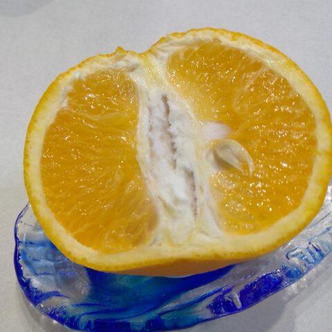 半分のオレンジ